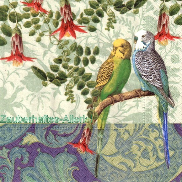 10334 Budgies - Wellensittiche